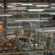 Pilsner Urquell evita parar la producción al inspeccionar con Elios