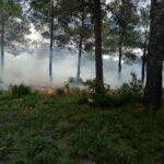 Proyecto ETHON: Gestión integral de los incendios forestales