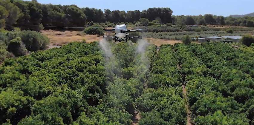 Las ventajas de HYBRiX en la producción agrícola