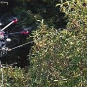El dron que acabará con la avispa Velutina