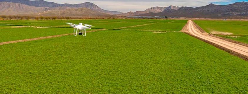Agricultura 4.0 , mapeo con drones para la alimentación animal